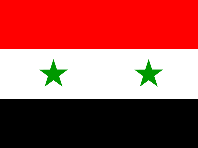 Flag of Syria logo