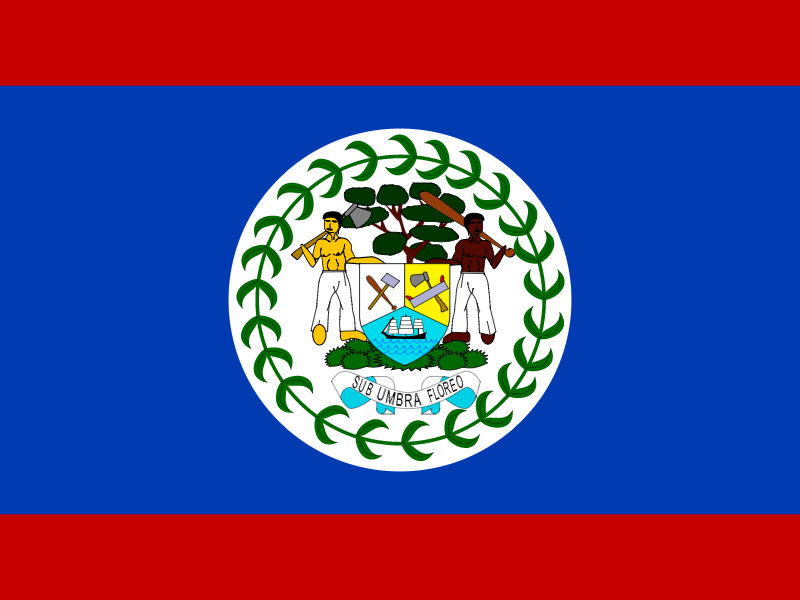 Flag of Belize logo