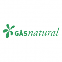GasNatural vector
