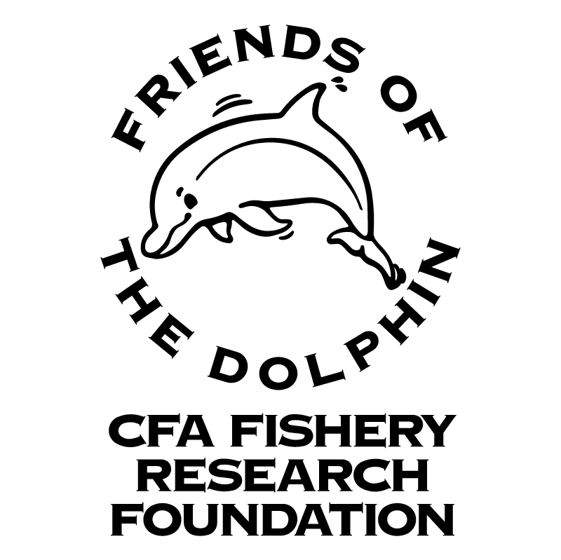 Friends of the Dolphin vector