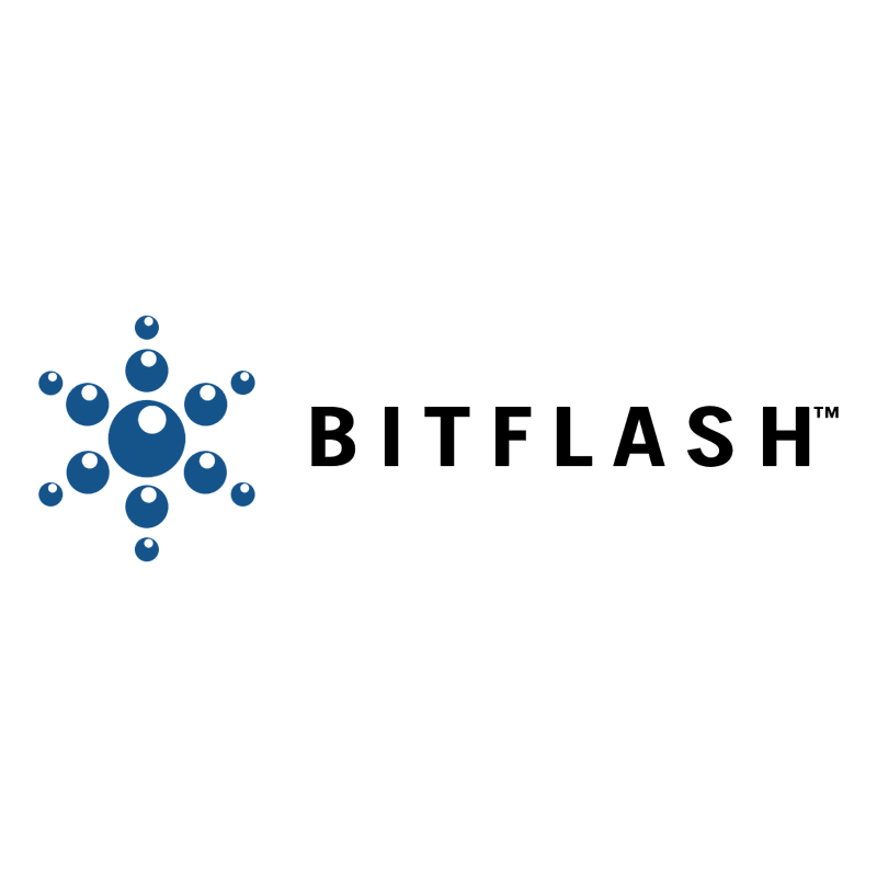BitFlash 43454 vector
