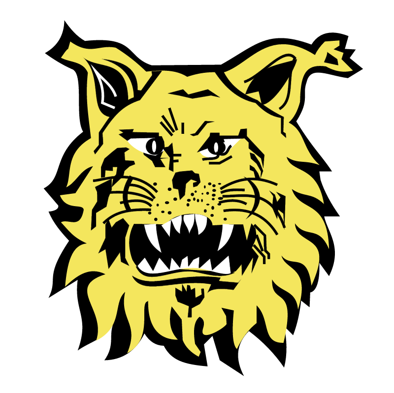 Footbal Club Ilves de Tampere vector