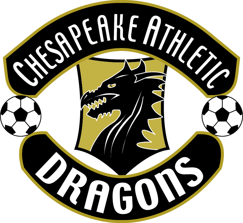 chesapeake atl dragons vector