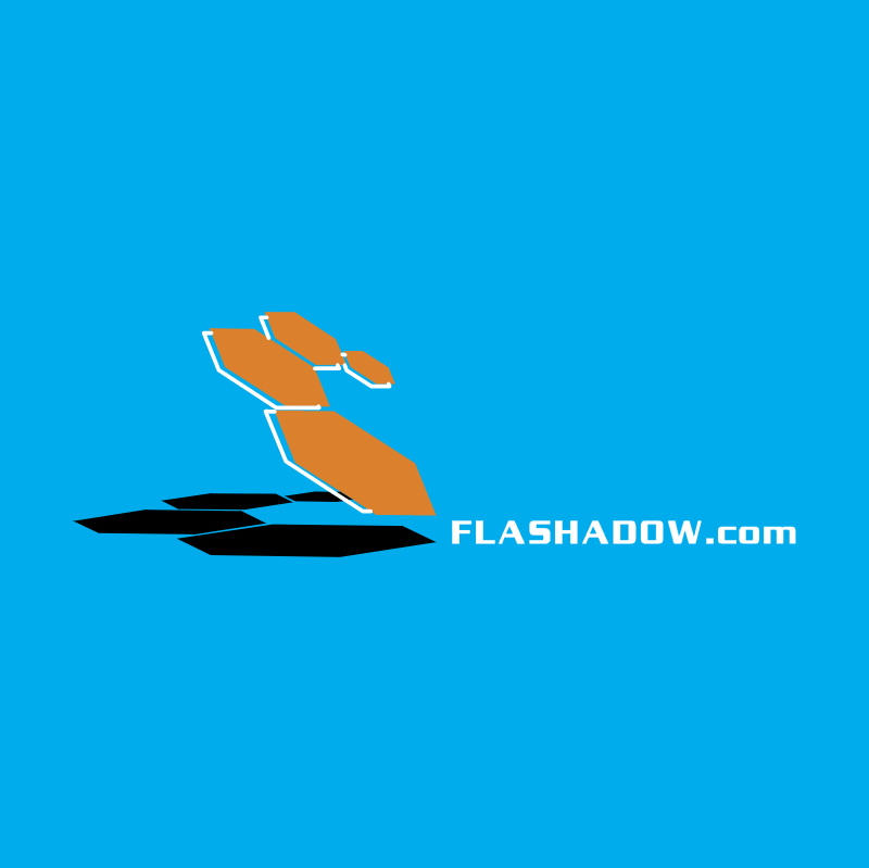Flash Shadow vector