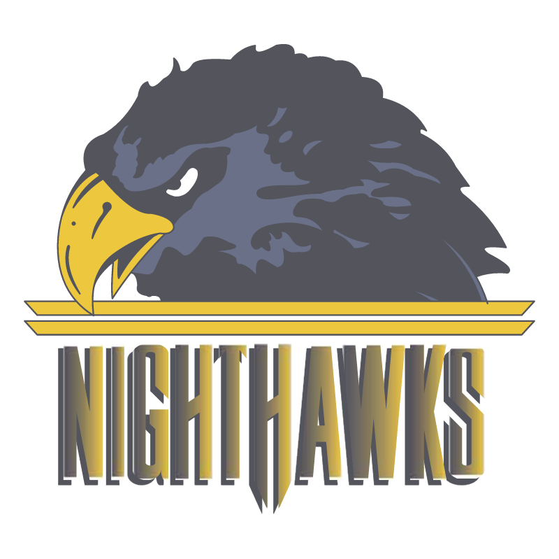 Norfolk Nighthawks vector