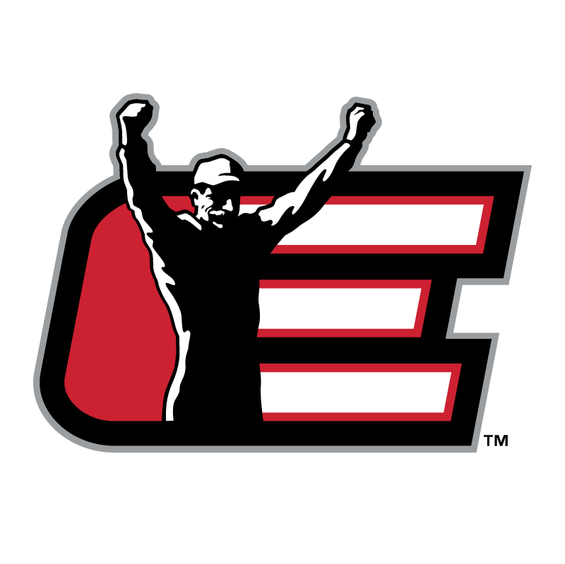 Dale Earnhardt Inc vector logo