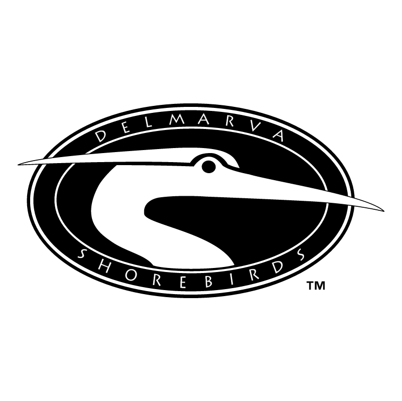 Delmarva Shorebirds vector