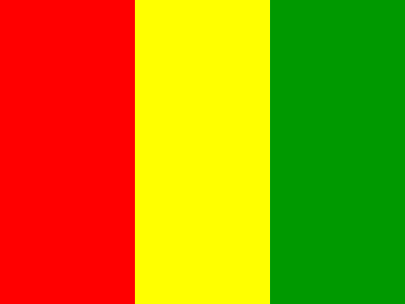 Flag of Guinea vector logo