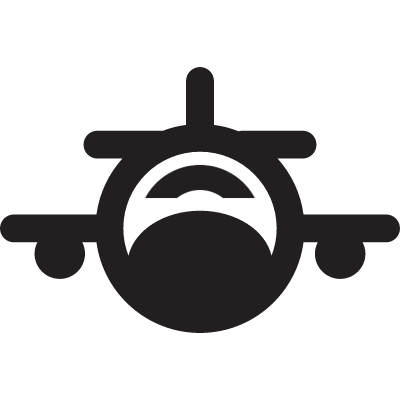 Fronal plane with small wings logo