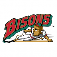 Buffalo Bisons 57970 vector
