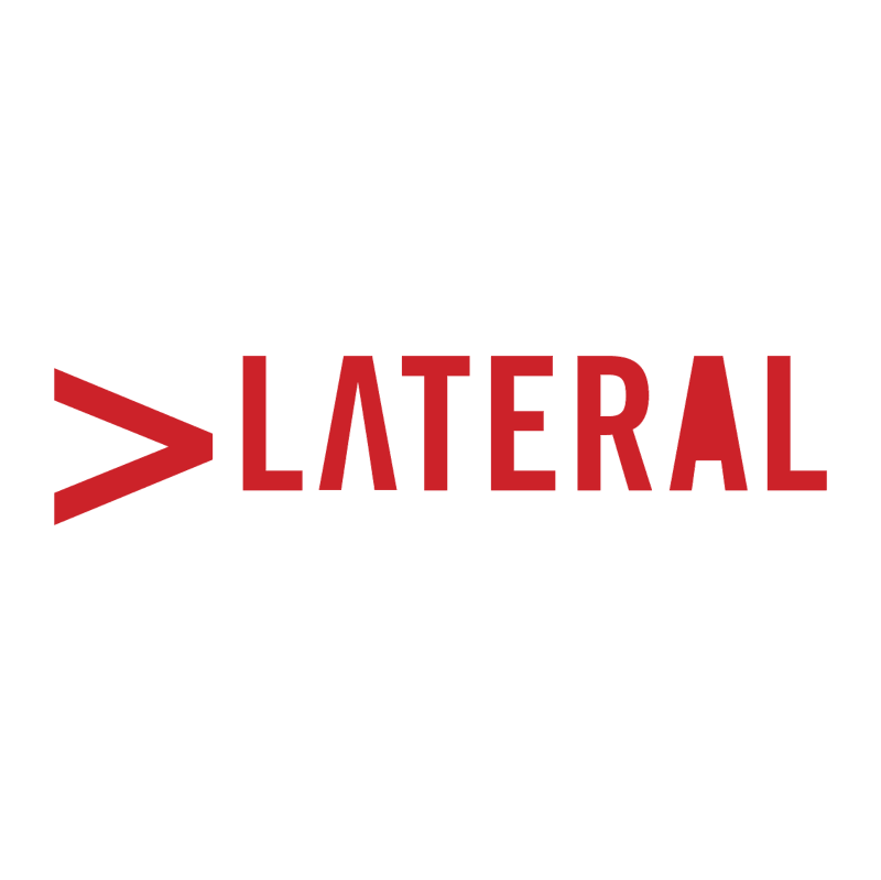 Lateral net vector logo