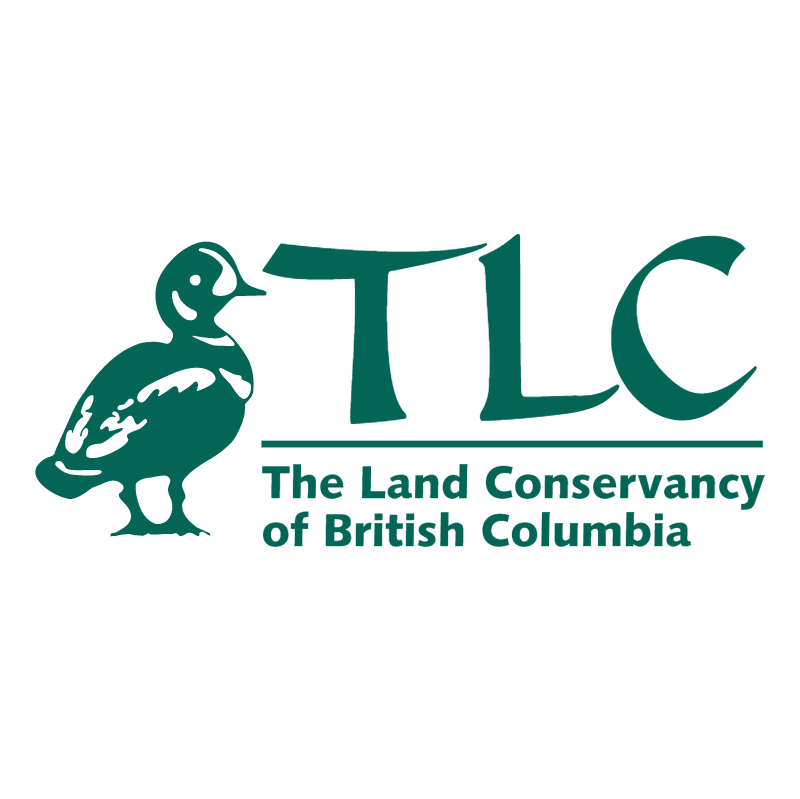 TLC vector logo