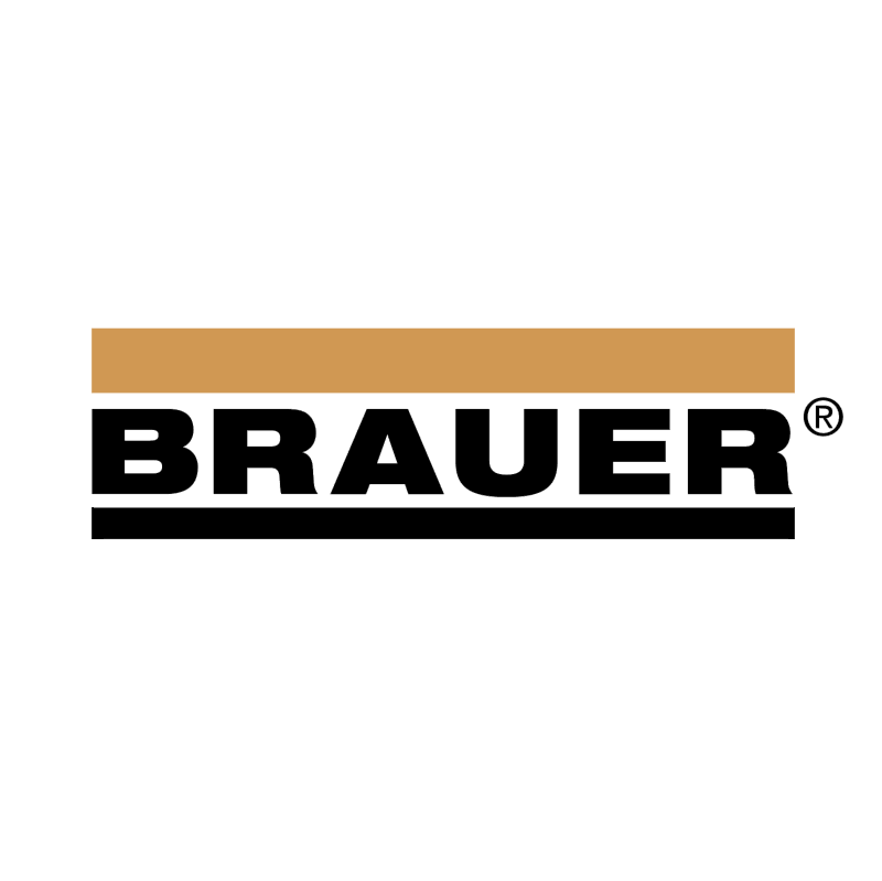 Brauer 44781 vector