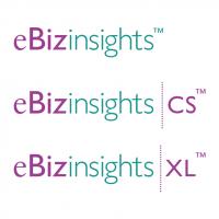 eBizinsights vector