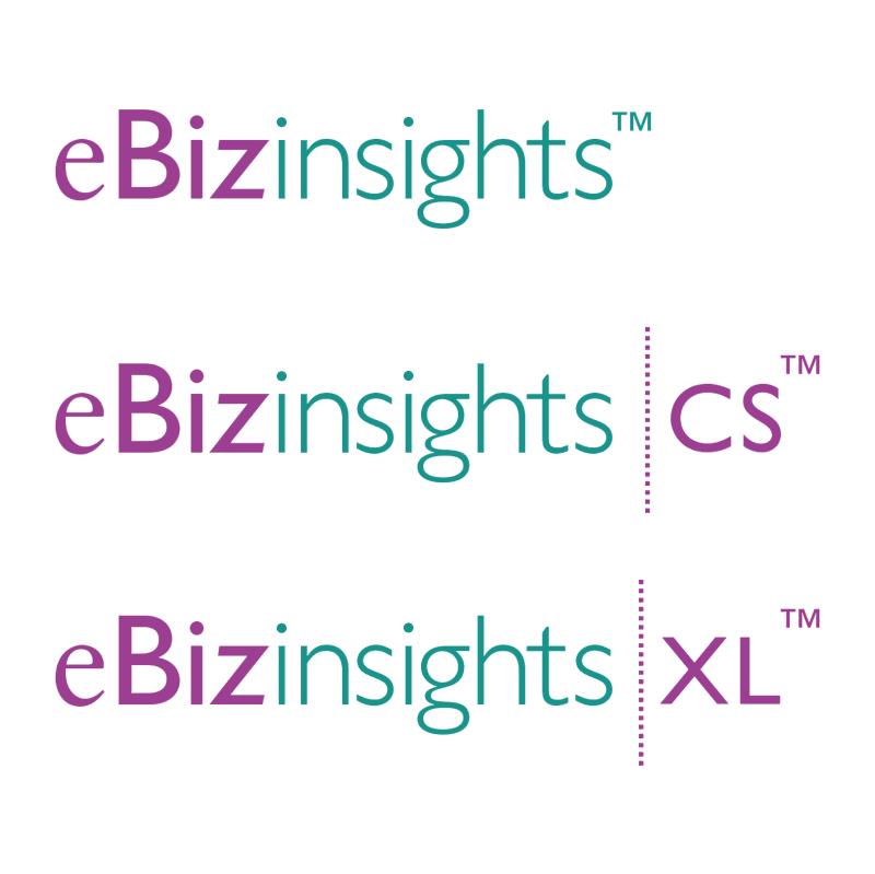 eBizinsights vector logo