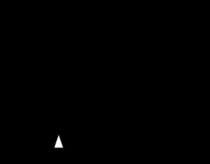 GANNETT vector