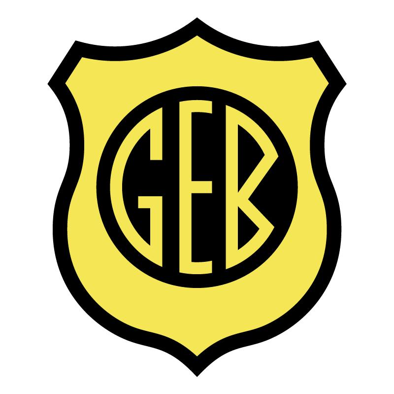 Gremio Esportivo Bage de Bage RS vector