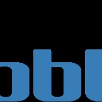 DUBBLES vector