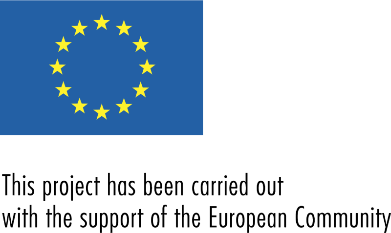 EUROPEAN COMMUNITY vector