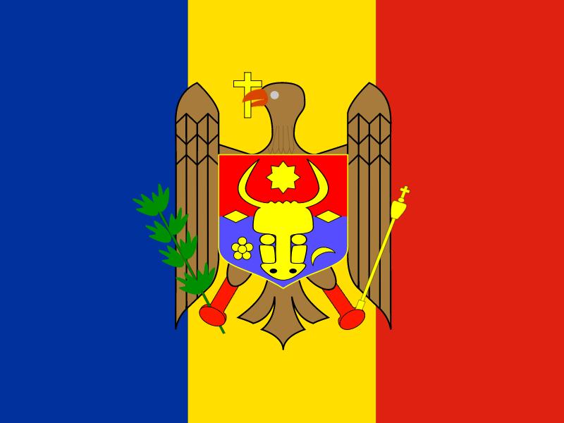Flag of Republic of Moldova vector