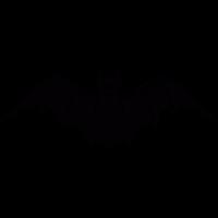 Frontal bat vector