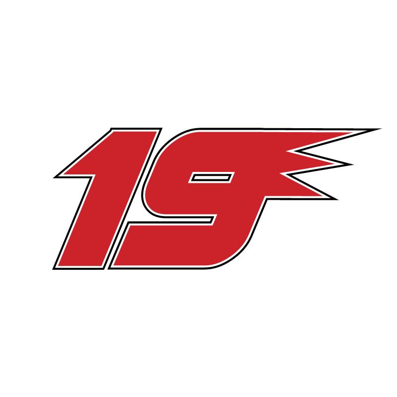 19 Jeremy Mayfield NASCAR vector