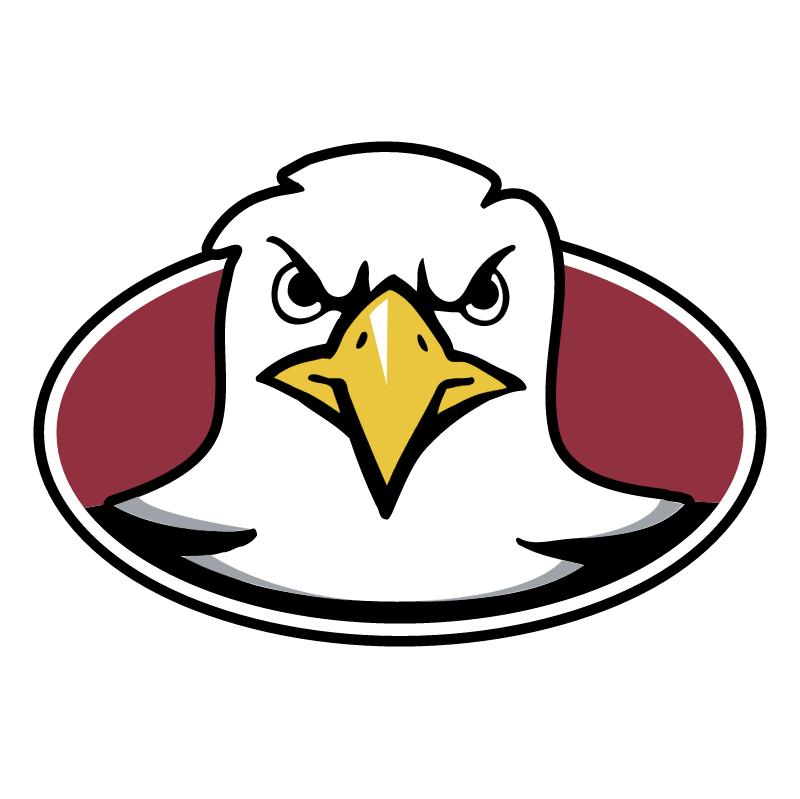 Boston College Eagles 73901 vector