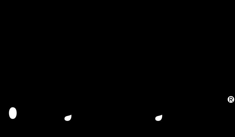 cvs vector