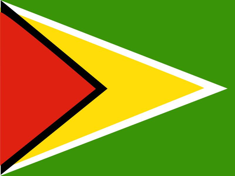 Flag of Guyana vector logo