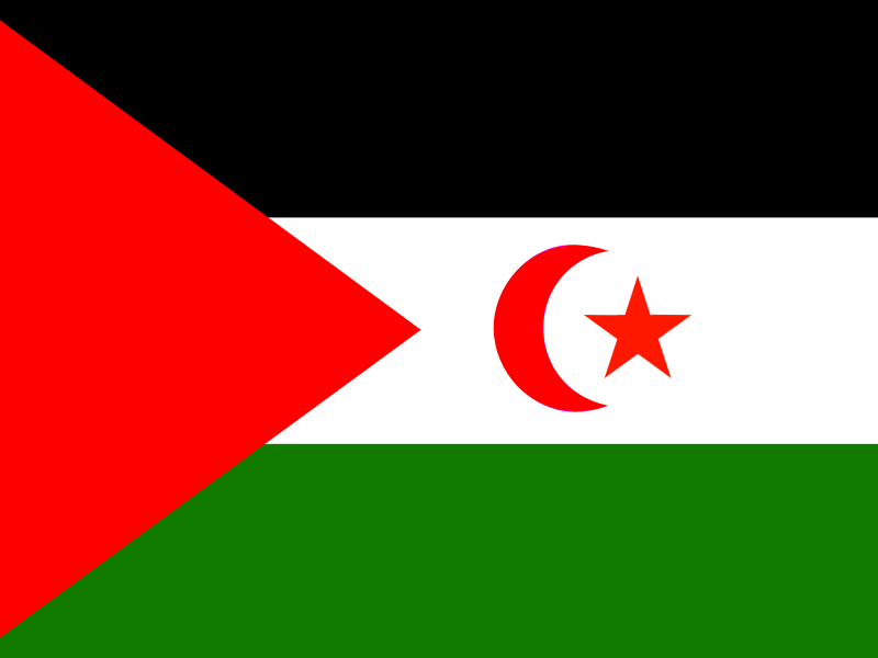 Flag of Western Sahara vector logo