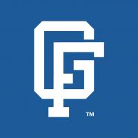 Great Falls Dodgers vector