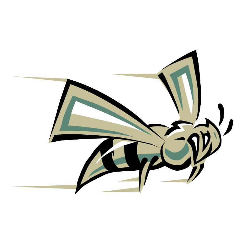 Sacramento State Hornets vector