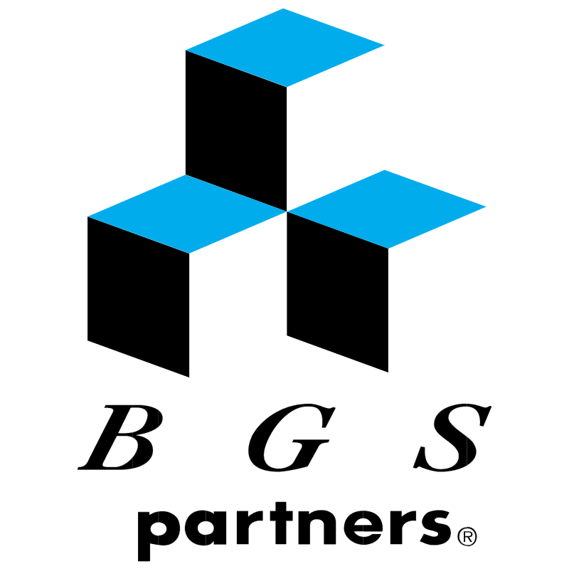 BGS Partners vector