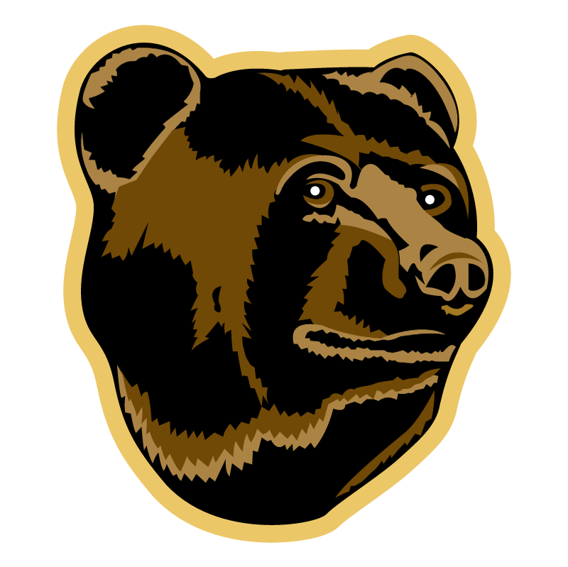 Boston Bruins 76877 vector