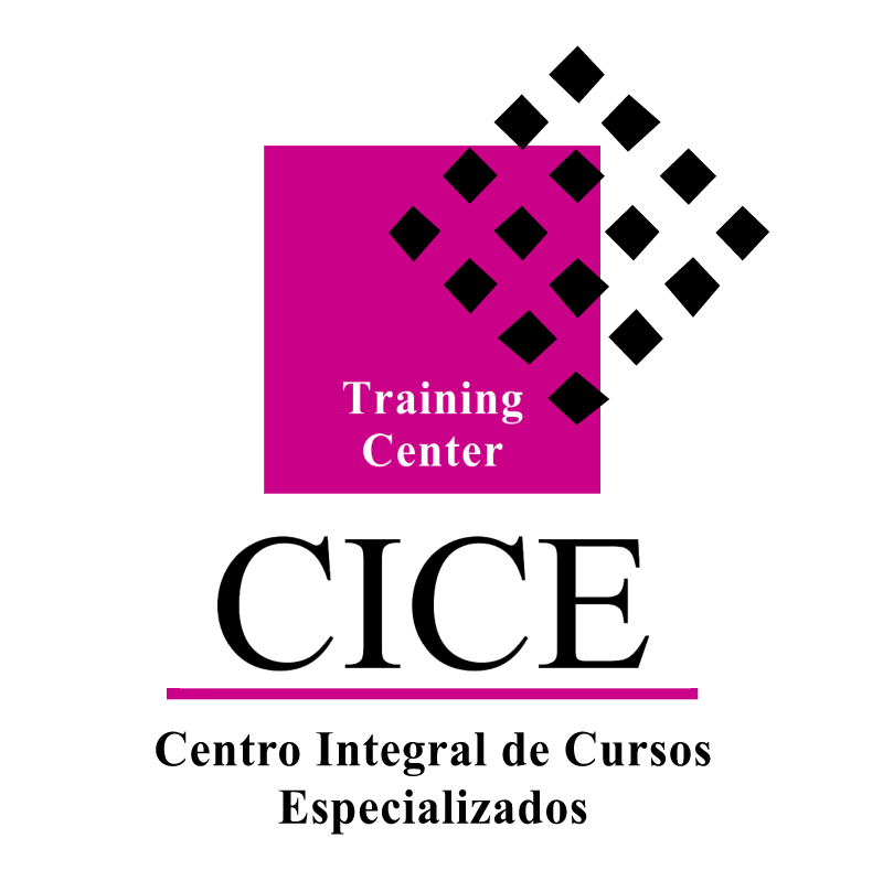 CICE vector