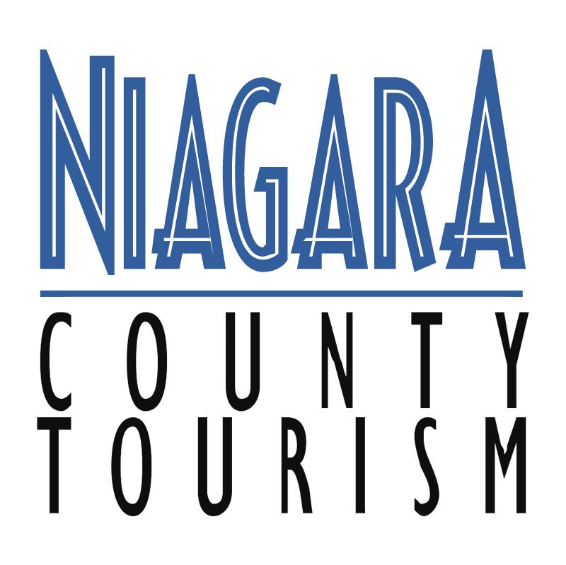 Niagara vector