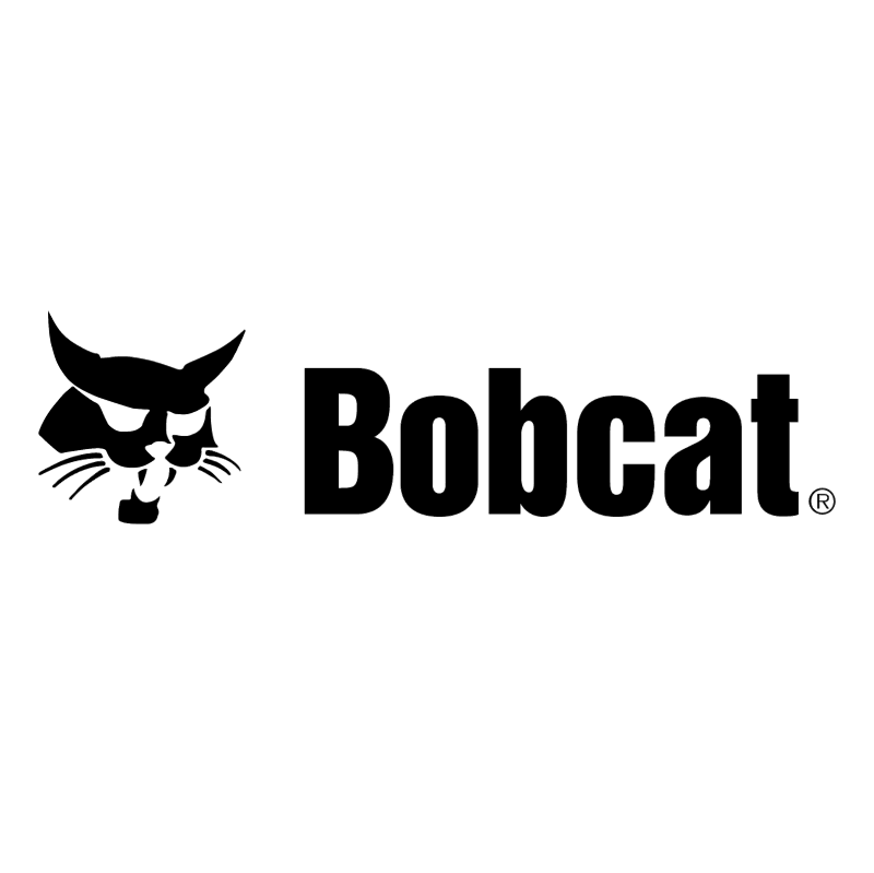 Bobcat 50221 vector