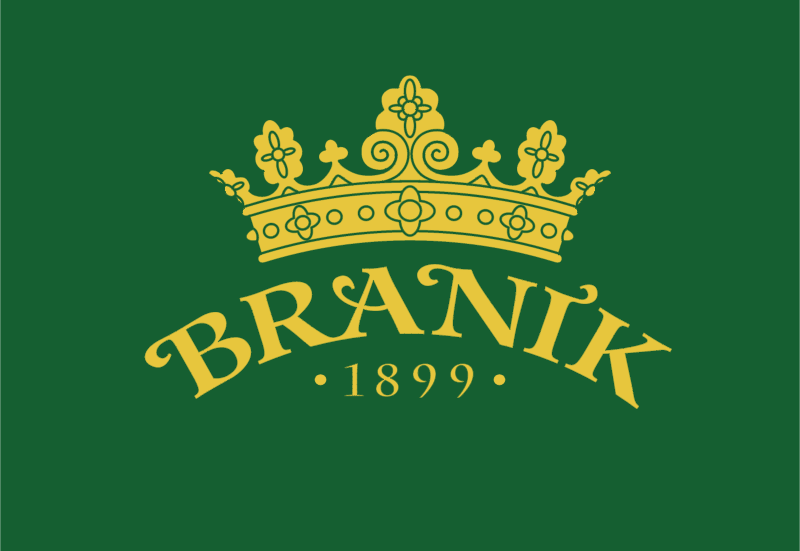 Branik logo vector