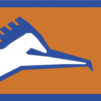 CORREC 1 vector