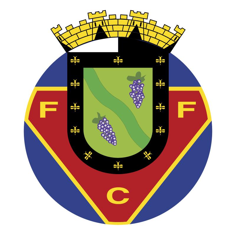 FC Felgueiras vector