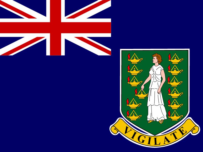 Flag of British Virgin Islands vector
