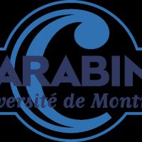 Carabins logo vector