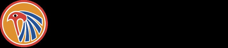 EBYPT AIR vector