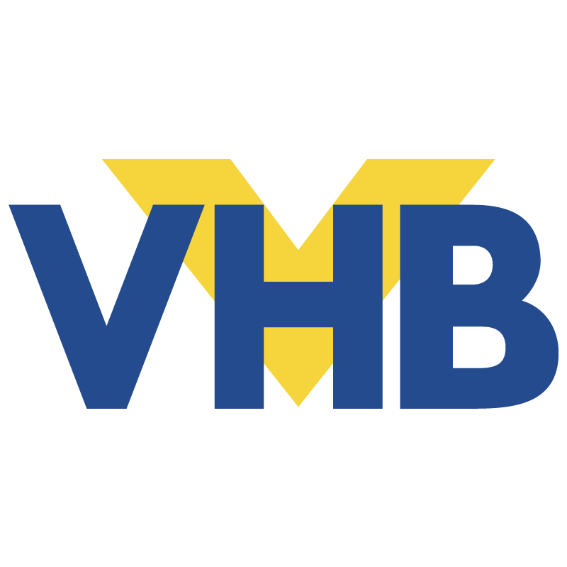 VHB vector
