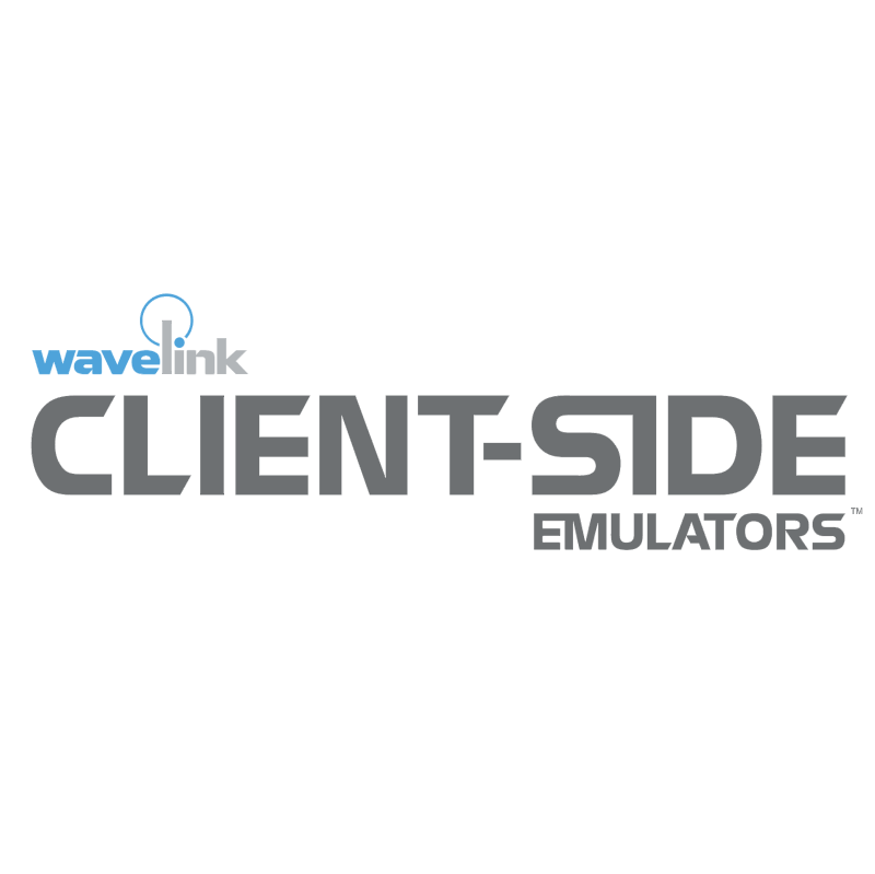 Client Side Emulators vector