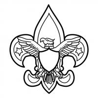 Scouting USA vector