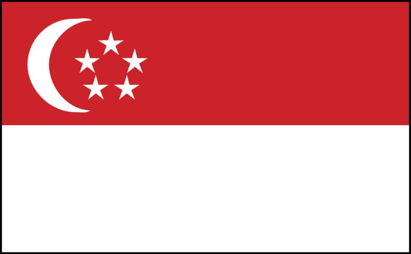 singapor vector
