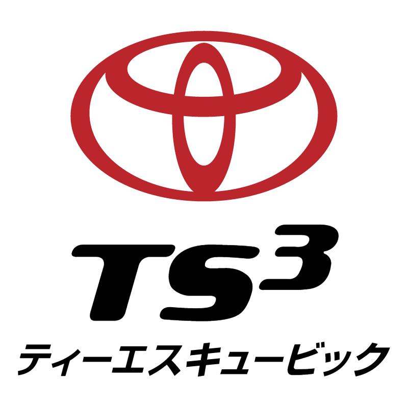 TS3 Card vector