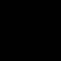 Shield web, IOS 7 interface symbol vector