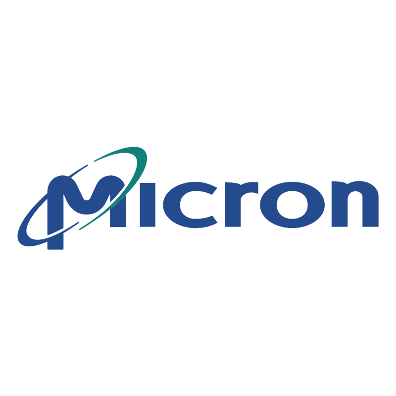 Micron vector